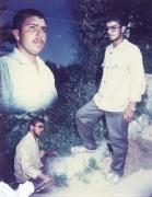 شهید سید حسن شاهچراغی(ف. سید علی)_5